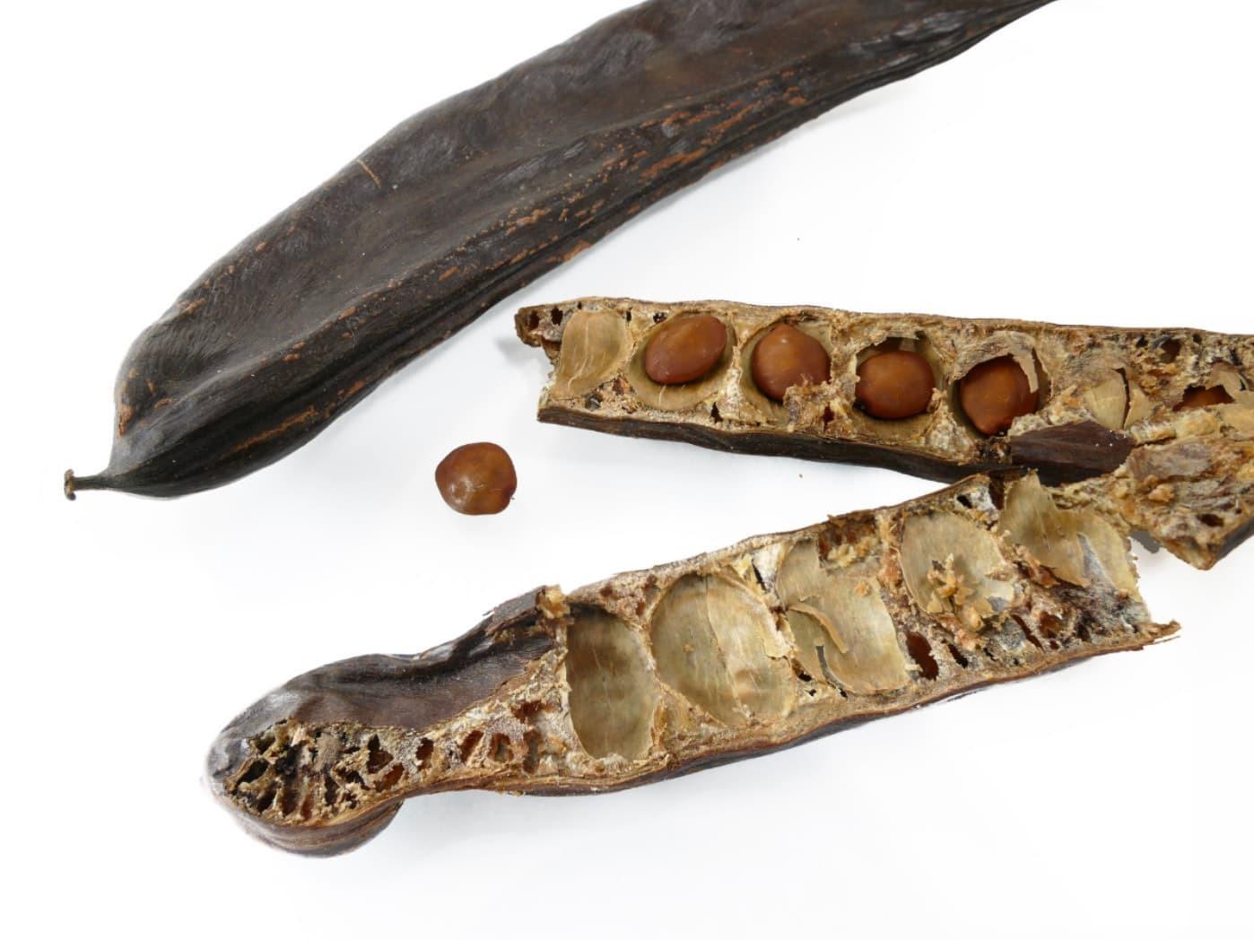 克拉源自於希臘語角豆樹的意思,角豆樹的種子每顆大約就是200毫克。