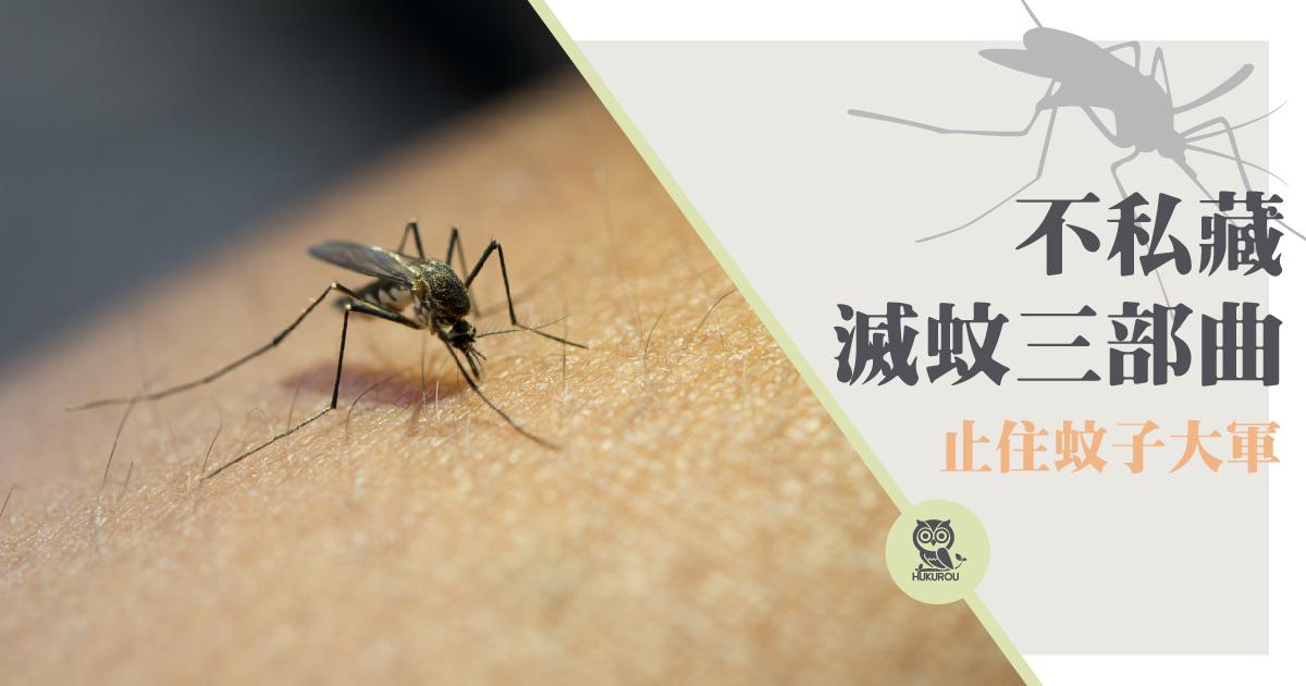如何滅蚊?最有效滅蚊方法是滅蚊液嗎?