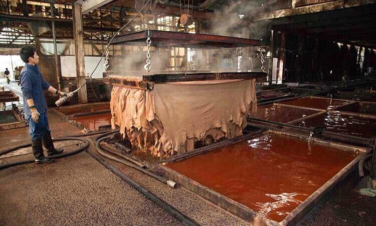 植鞣機器與植鞣後的紅茶色皮革