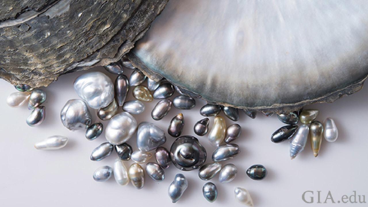 大溪地珍珠又稱黑珍珠