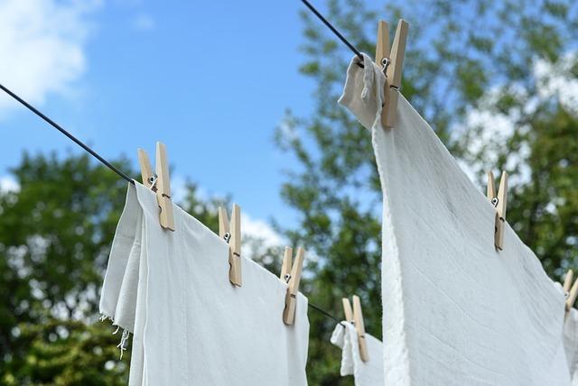 高溫殺塵蟎有用嗎?曬棉被就能避免過敏?