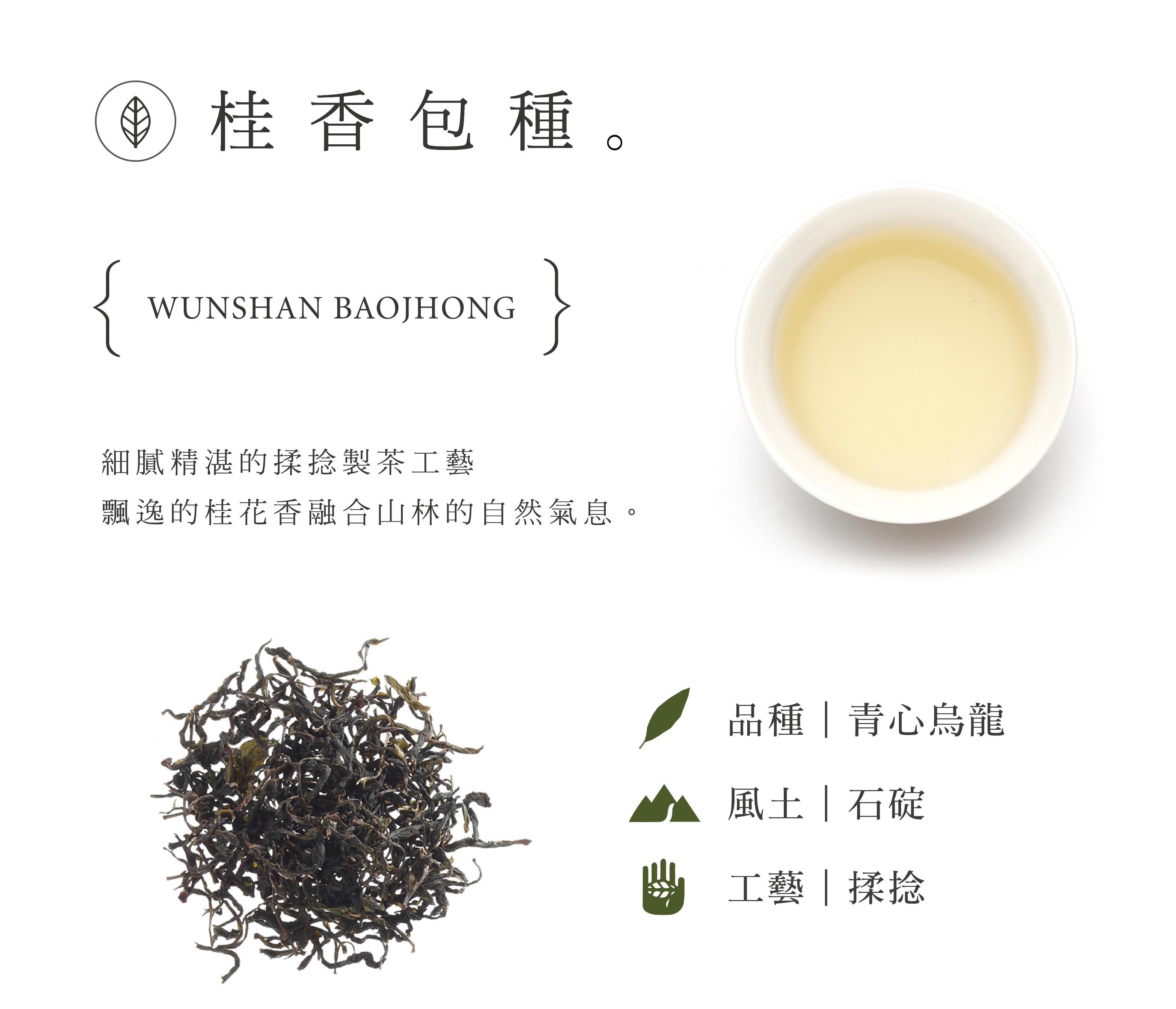 桂香包種 細膩精湛的揉捻製茶工藝 飄逸的桂花香融合山林的自然氣息