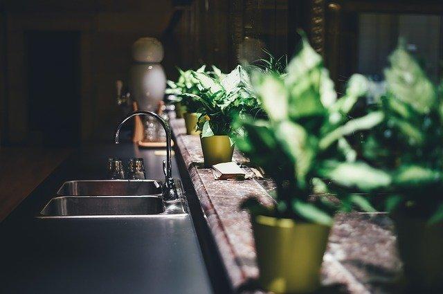 殺果蠅秘技,首重居家環境整潔