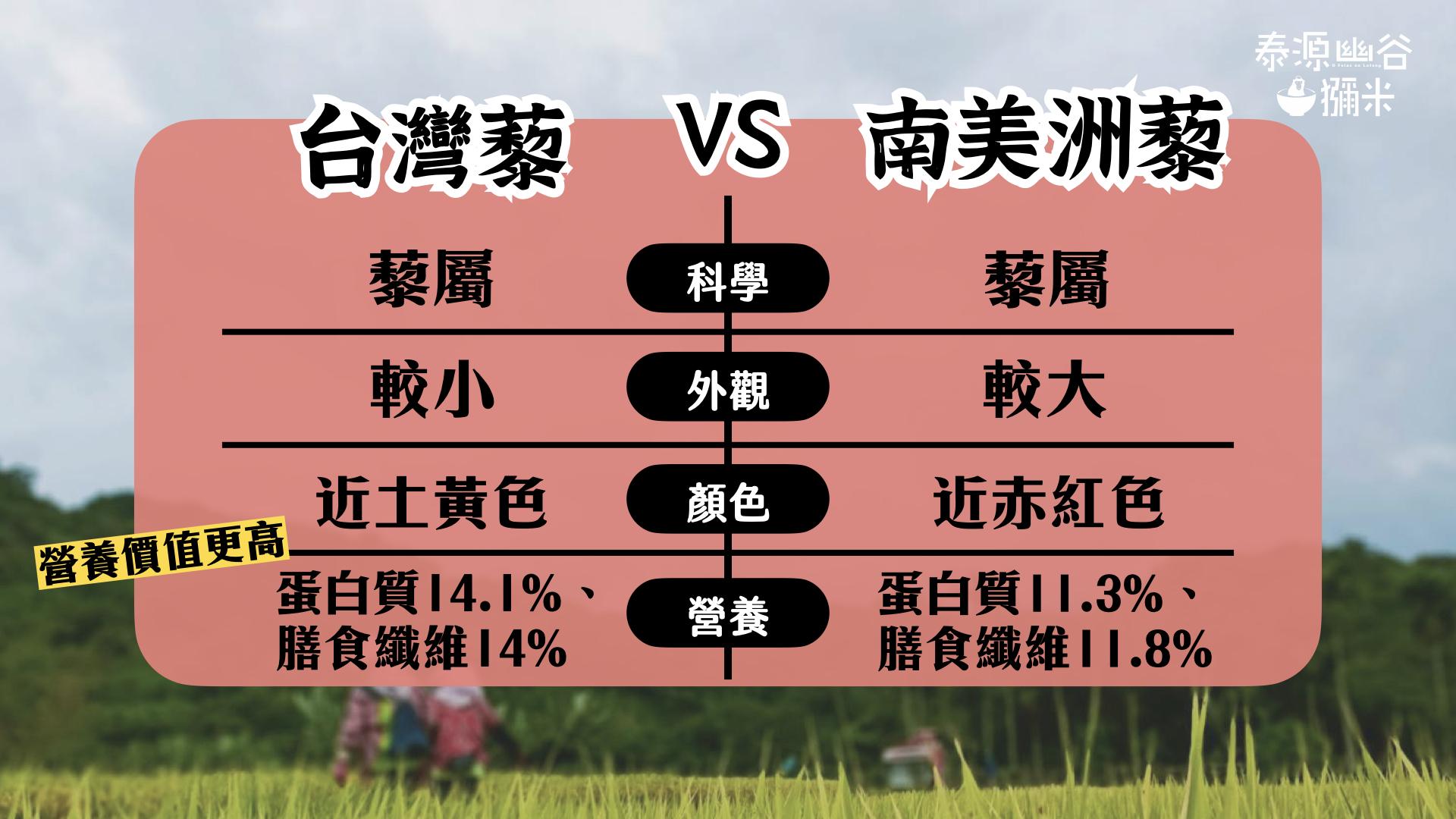 台灣紅藜與南美洲藜麥差異表
