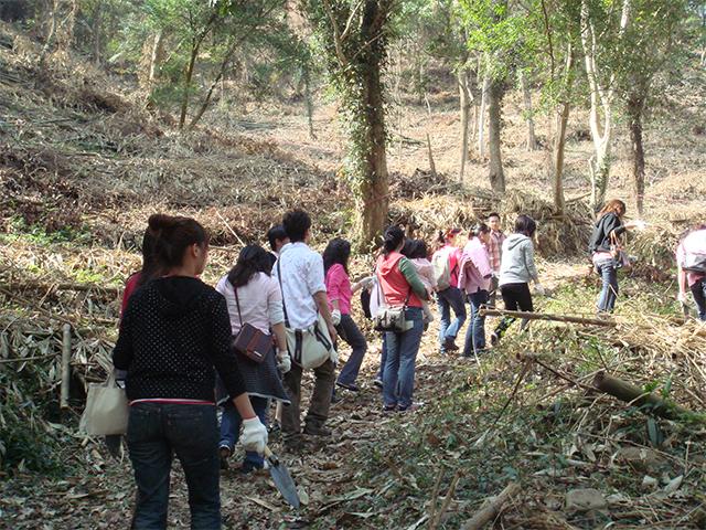 植樹活動_植樹造林計劃_糖村