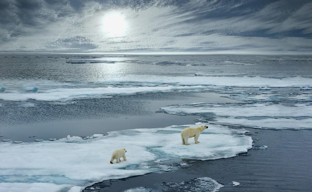 學會如何節能減碳,保護地球