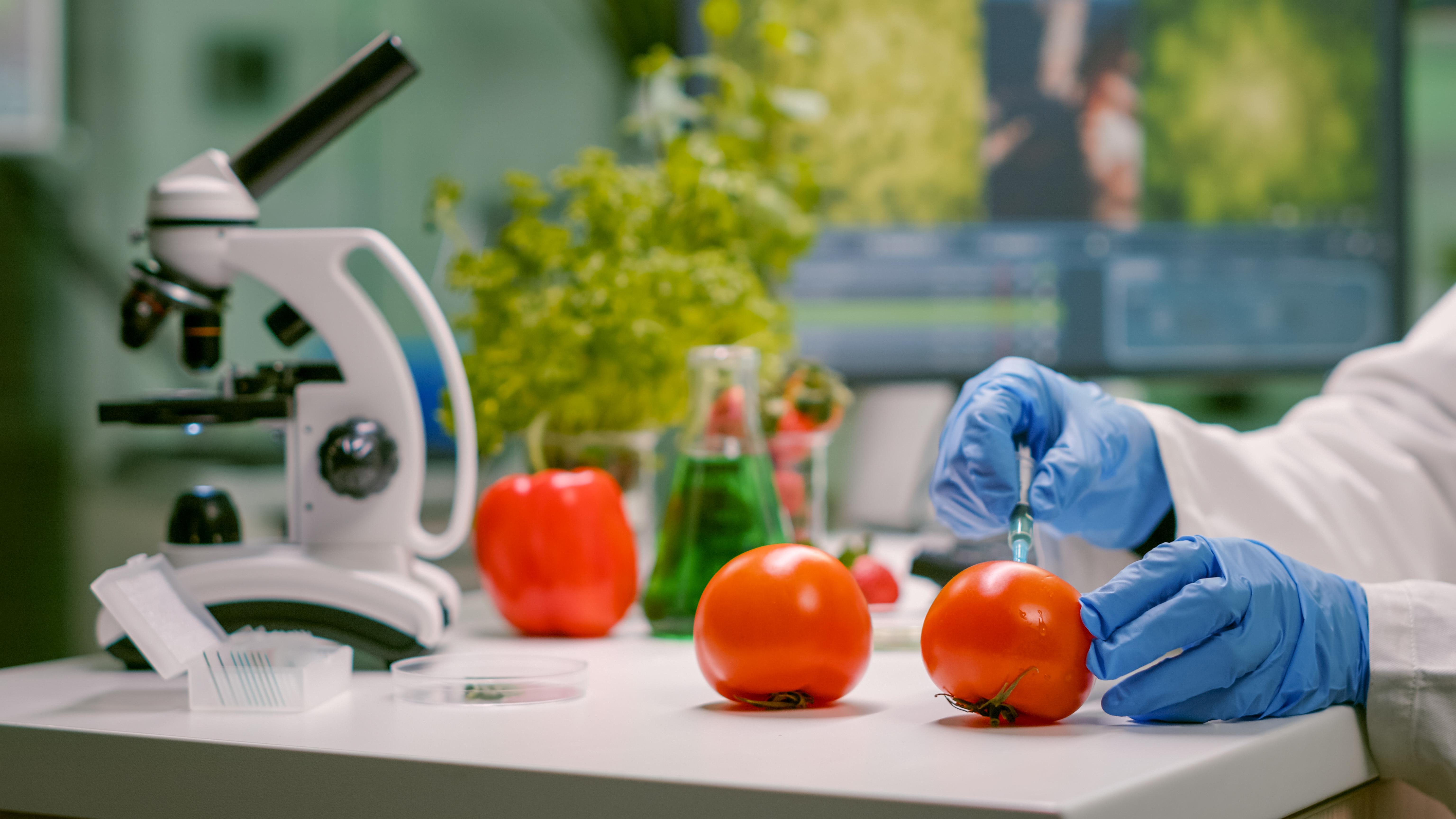 基因改造的農產品